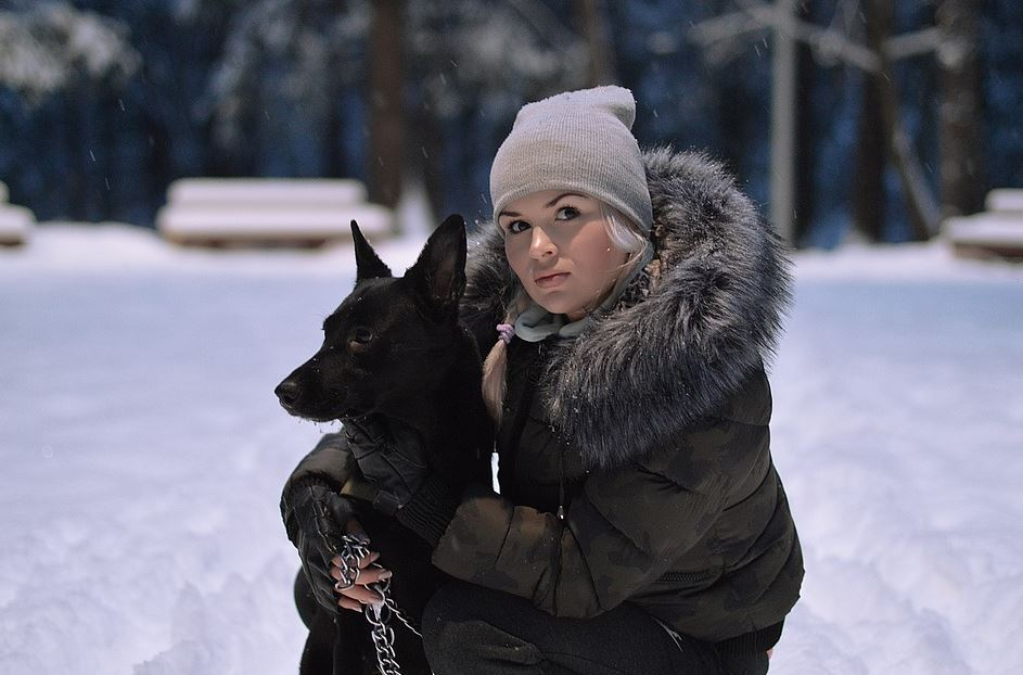 things to do with a puppy in the winter, dog-friendly winter activities, winter activities for dogs, what to do with my dog in winter